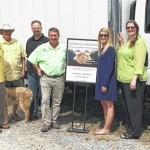 Old Mill Stream honored