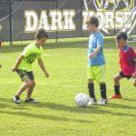 Developing their skills