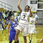 Lady Dark Horses open postseason with rout