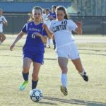 Lady Horses stifle Midway