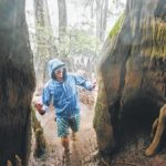 New state park proposed for Sampson County's Black River