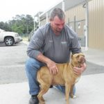 Sampson shelter seeking dog food donations